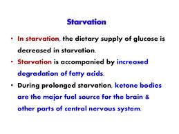 Image result for cellular starvation diabetes