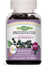 Sambucus <b>Kids</b> Gummies 60 ct. - Nature's Way®.