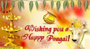Image result for pongalimages