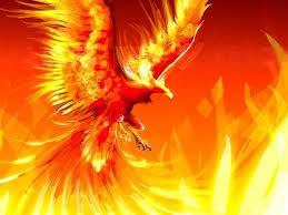Imagini pentru myth phoenix