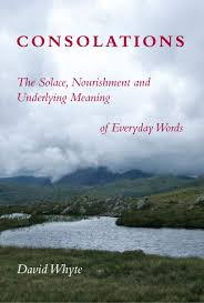 consolations the solace nourishment and underlying meaning of consolations the solace nourishment and underlying meaning of everyday words david whyte 9781932887341 amazon com books