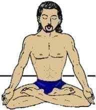Resultado de imagem para flor de lotus, ,meditação