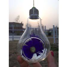 glass bulb lamp shape flower water plant hanging vase hydroponic container home office wedding decor buy shape home office