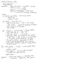 white lie essay writinggroup web fc com white lie essay