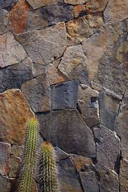 Articles about tunquen treasure on Dwell.com | <b>Stone</b> texture, <b>Stone</b> ...
