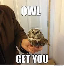 Vengeful Owl Meme | WeKnowMemes via Relatably.com