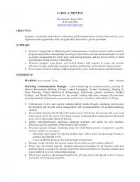 how to make a basic resume for a job   Template happytom co