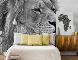 liberty bedroom wall mural: majestic lion head wall mural screen shot    at  am x