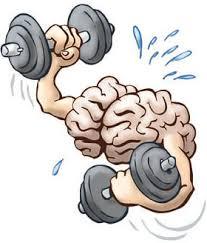 המוח שלכם, לא פחות חשוב