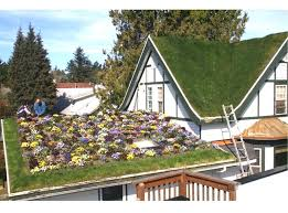 living roof systems troys green roof troys greenroof troys green roof