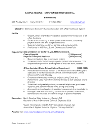 it resume samples for experienced professionals resume format  cv