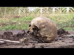 <b>Человеческий череп</b> обнаружили в одном из дворов ...