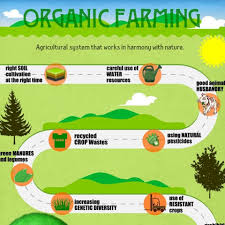 the importance of biodiversity for agriculture essay organic farming the environment