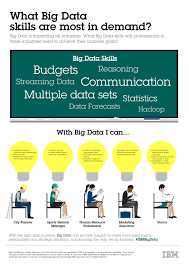 ibm news room infographic what big data skills are most in hi res version image jpeg 4 mb
