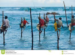Image result for stilt fishing