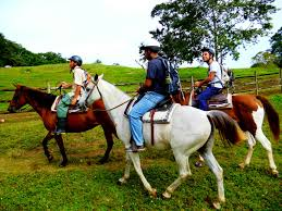 photo essay take me on a cayo adventure horseback riding in