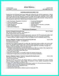 manager description for resume and case  seangarrette conurse case manager resume examples and case manager resume pdf   manager description for resume