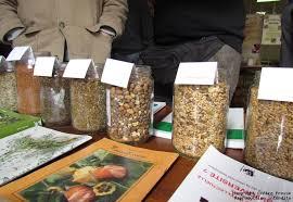 Béruges : septième édition de la journée des semences potagères