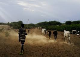 when drought hits hard a photo essay from adaptation view this album and others on assar s flickr page