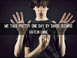 david sedaris me talk pretty one day essay sludgeport web fc com david sedaris me talk pretty one day essay