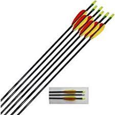 <b>Archery</b> Arrows - Sports & Outdoors at Amazon.co.uk