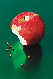 building a better apple the new yorker by john seabrook