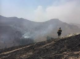 Wet <b>Spring</b> Could Mean <b>Low-To</b>-Average Fire Season In Idaho ...