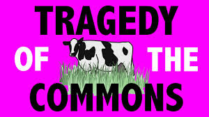 philosophy rational choice theory tragedy of the commons hd philosophy rational choice theory tragedy of the commons hd