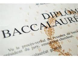 Dissertation editing help dubai   www vegakorm com