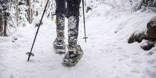 2019 mid calf boots women winter female thick fur sow shoes warm waterproof footwear