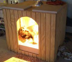images about Dog House Ideas on Pinterest   Dog houses  In    Friend Stay  You Deserve  Old Friends  Stay Warm  New Houses  Dog House Ideas  Amos