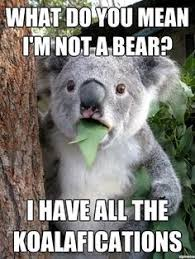 Animal Puns on Pinterest | Funny Puns, Funny Husky Jokes and ... via Relatably.com