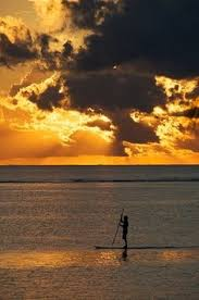 Image result for glide paddle board from air river sunset