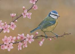 <b>Paintings</b> of Wildlife in <b>Spring</b> | Easter Art Collection – Wildlife Artist ...