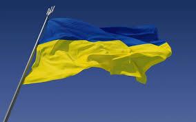 Чемпионка мира по гимнастике Наталья Годунко продала золотую медаль для нужд украинской армии - Цензор.НЕТ 6554
