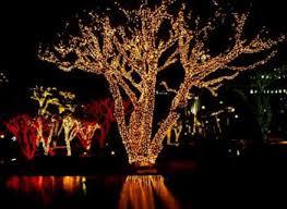 Клип Лайт <b>светодиодный гирлянды</b> на деревья clip <b>light</b>