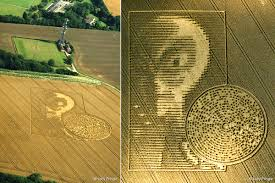 Image result for crop circles 2015