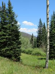 colorado family vacation by the numbers a photo essay steve s scenic trail view at snow mountain ranch colorado
