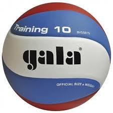 <b>Мяч волейбольный Gala Training</b> 10 арт. BV5561S р. 5