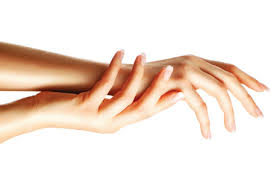 Image result for the hands photo