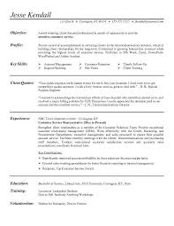 examples of a customer service builder services sample s sample resume writing a good s resume objective for resume in retail