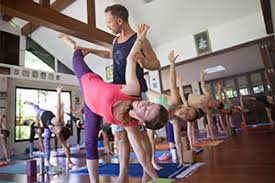 Image result for thailand yoga training girl