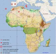 CJB - African plant database - Detail