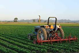 agriculture in india essay for school students   essayspeechwalaagriculture in india