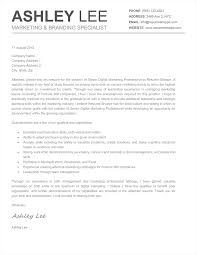 what goes on cover letter of resume all file resume sample what goes on cover letter of resume resume cover letter samples bestsampleresume cover letter prev next