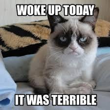 Ian Somerhalder, Grumpy Cat Picture at SXSW 2013, Twitter Photo ... via Relatably.com
