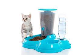 50 Best Automatic Cat Feeders & <b>Food</b> Dispensers 2020 - Pet Life ...