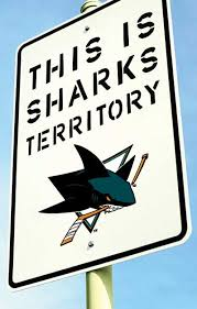 Image result for sharks hockey