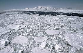 Image result for la antartida se derrite