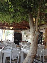 The <b>best fisherman's</b> tavern in Mani - Review of Faros, Karavostasi ...
